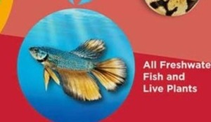 All Freshwater Fish & Live Plants