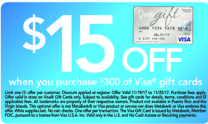 Purchase $300 of Visa Gift Cards