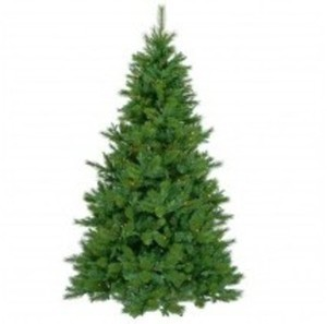 Albany Pine 6.5' Christmas Tree
