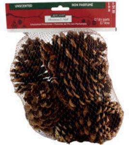 Ashland Christmas Pinecones