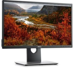 "Dell 22"" Monitor (11/20 11AM ET)"