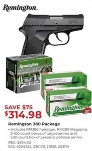 Remington 380 Package
