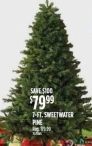 7-Foot Sweetwater Pine