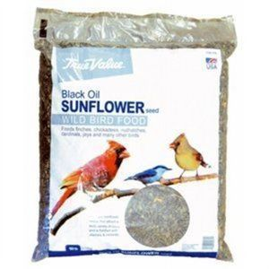 True Value Black Sunflower Bird Seed, 10-Lb.