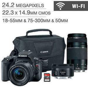 Canon EOS SL2 DSLR Camera 3 Lens Bundle